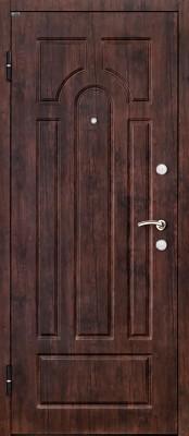 Титан Триумф (наружная сторона) Входные двери Титан в Минске